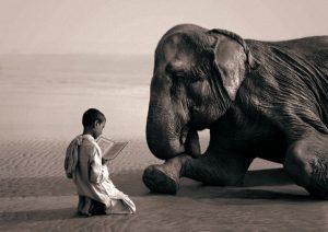 bí quyết thành công của người thành công là luôn khiêm tốn